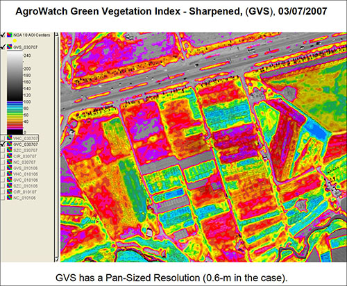 Agrowatch™ Green Vegetation Index - Pan Sharpened