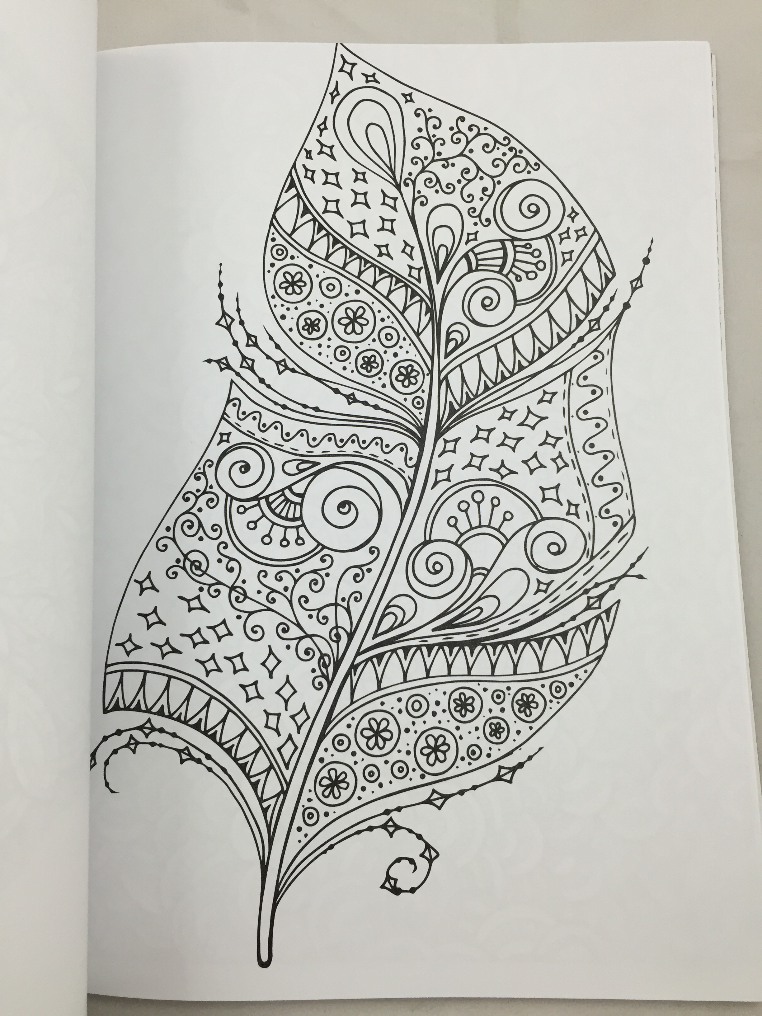 Art Therapy Adult Coloring Book Mandalas and More