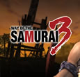 Way of the Samurai 3 System Requirements