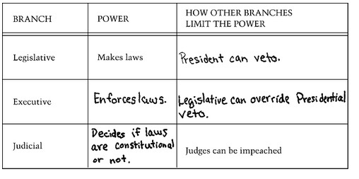policy issue and the three branches of government essay