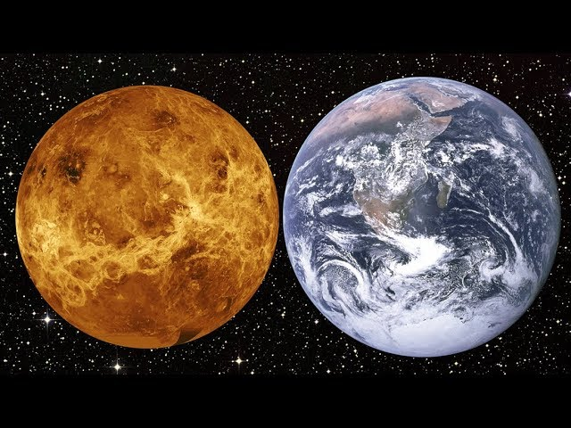 Venus: The Solar System's First Habitable Planet