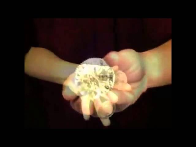 Max Grip Manipulation Wishing Coins GOLD by Alan Wong – Matrix Magic