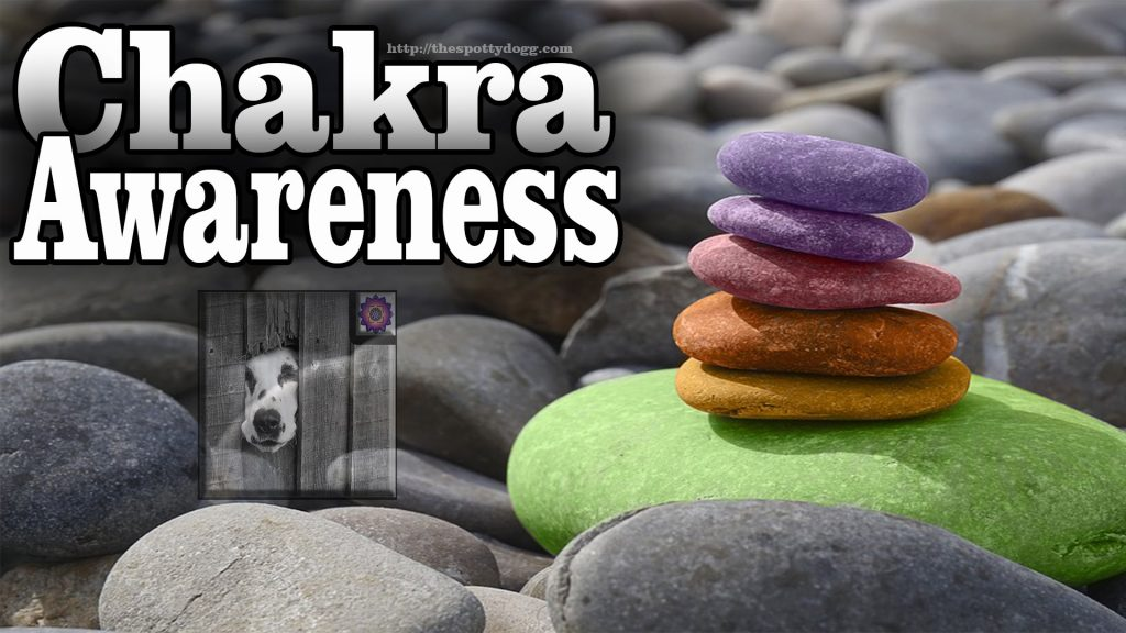 Chakra Activation Meditation Awareness #chakra #tantra