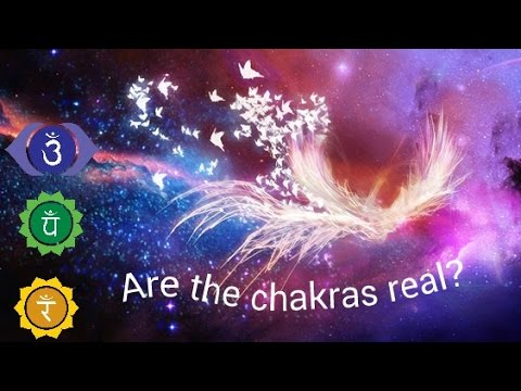 The chakras are not real, they're Reflections of our perceptions