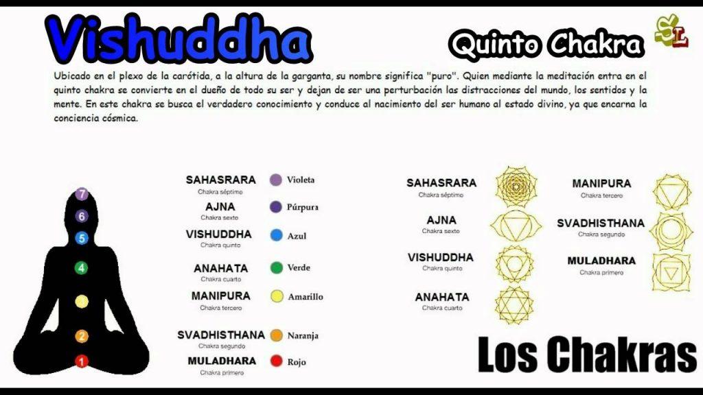 Los Siete Chakras Principales – Los Chakras y su Significado – Las chakras del cuerpo Humano