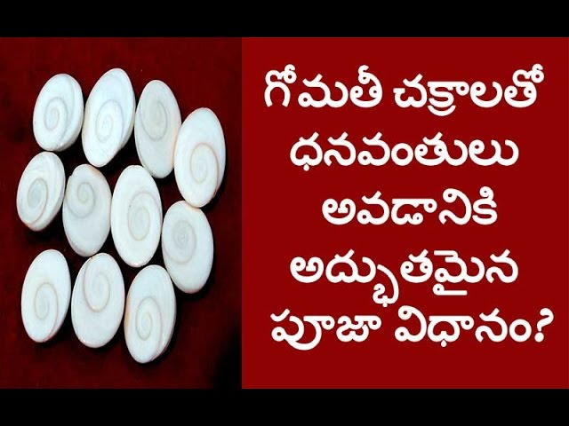 How Gomati Chakra Could Bring Richness,  Vastu tips. part- 2-  గోమతీ చక్రాలతో లక్ష్మీదేవి కటాక్షం ?