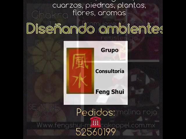 Ambientes holisticos: GCFSMex ( feng shui, chakras, aromas, plantas, flores, cuarzos )
