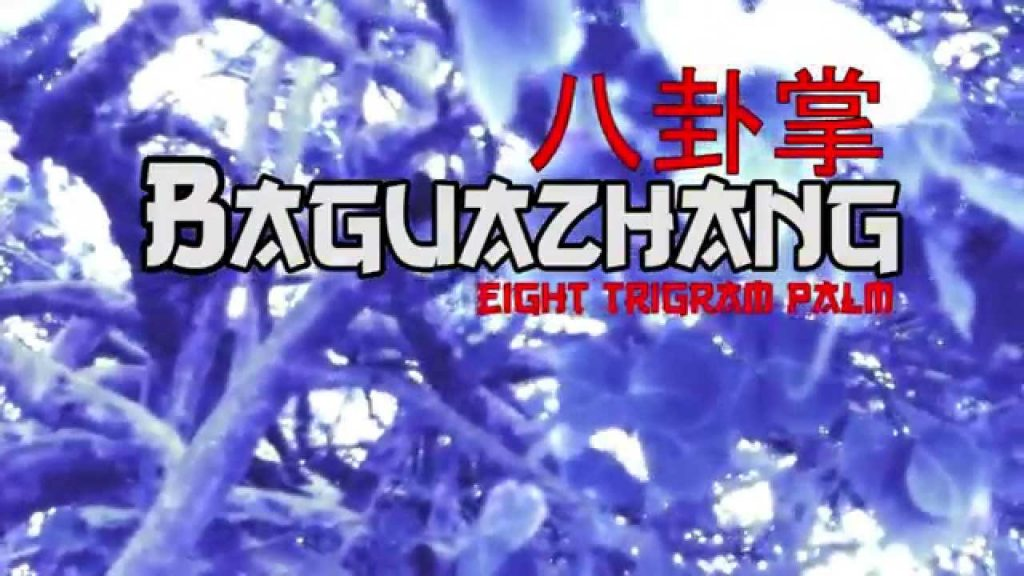 Baguazhang (Eight Trigram Palm) – Superior health, Fitness, Qigong, and Self-defense (Wushu)