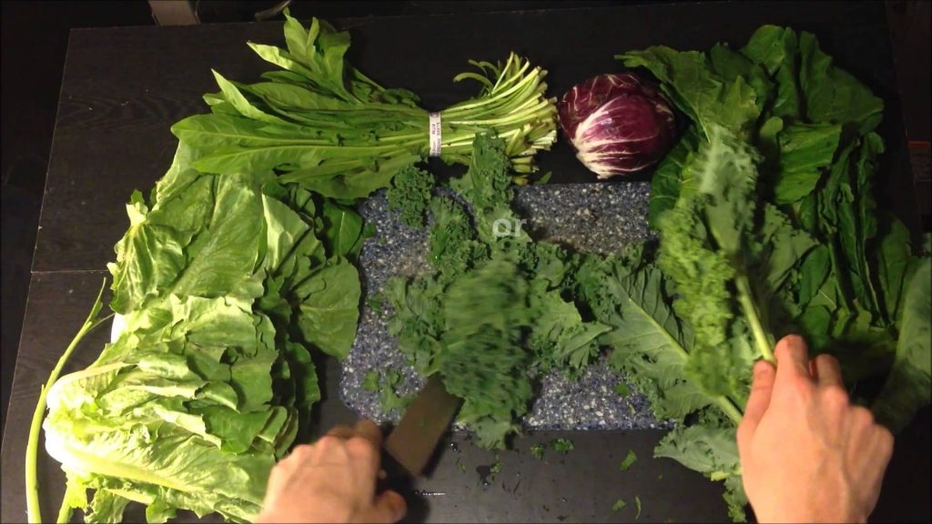 Bearded Dragon Diet: Nutritional Value of Kale in Veggie Mix