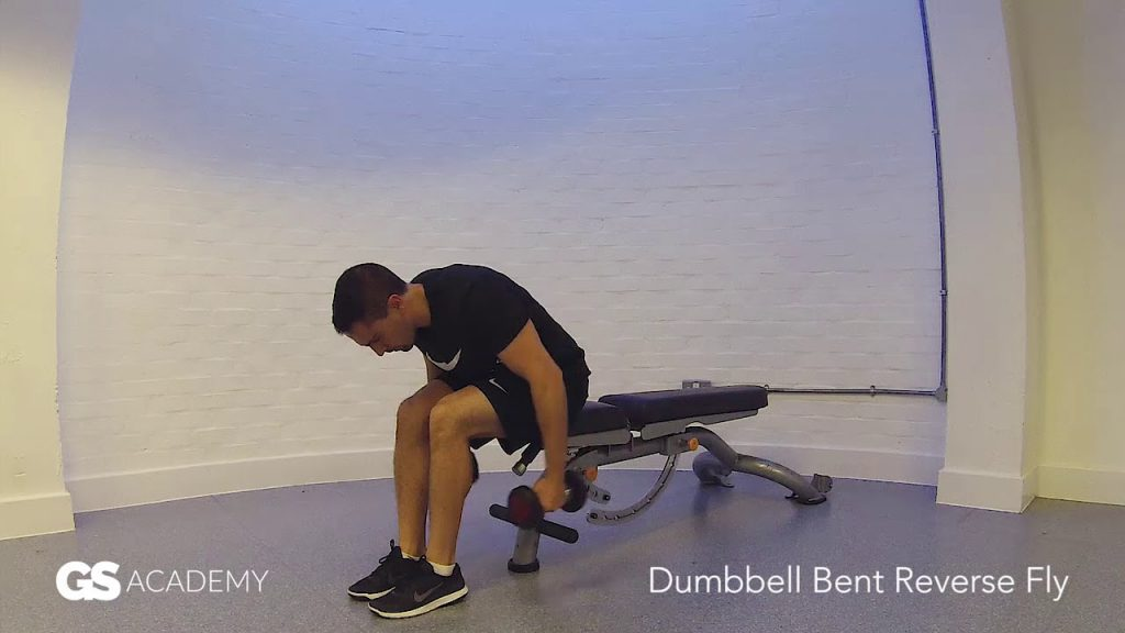 GS Health Fitness –  Dumbbell Bent Reverse Fly