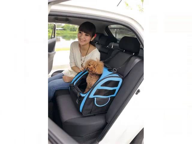 Dog Car Seat Carrier Set Of Picture Collection And Ideas Products Accessories