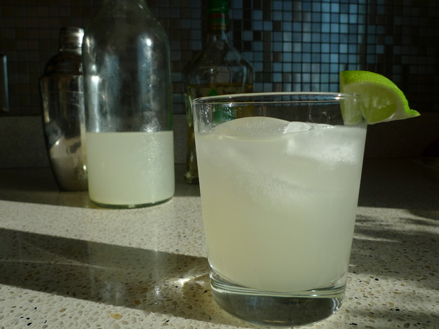 ginger margarita by joanie