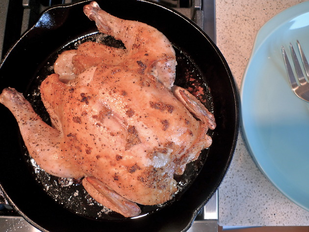 basic roast chicken by joanie