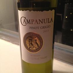 Campanula Pinot Grigio Hungary Wine