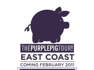 Shop at purplepigtour.com