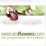 Browse Serenata Flowers