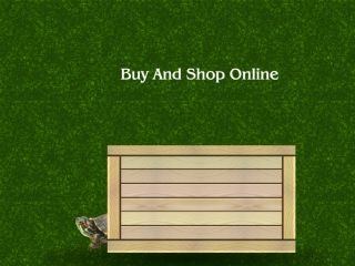 Shop at turtleshack.com