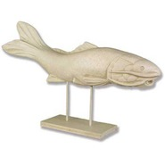Fish - Catfish - Midsize Swimming | Fiberglass Animal
