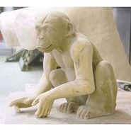 Chimpanzee | Fiberglass Animal