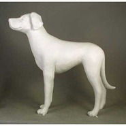 "Dog - ""Buddy"" 