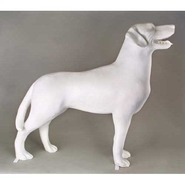 Dog - Labrador Retriever - Standing        | Fiberglass Animal