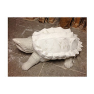 Alligator Snapping Turtle | Fiberglass Animal