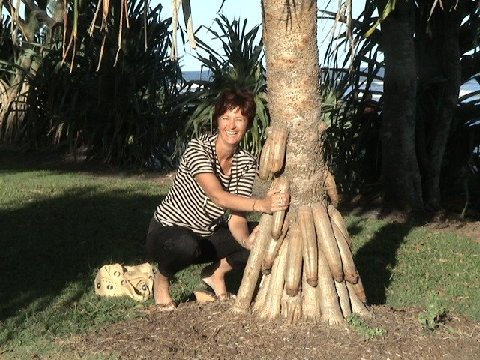 Penis-Tree