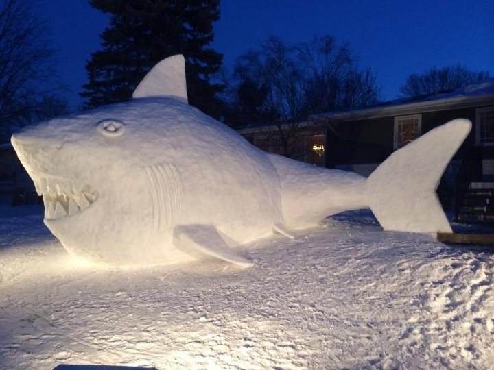 Snow Shark at Night