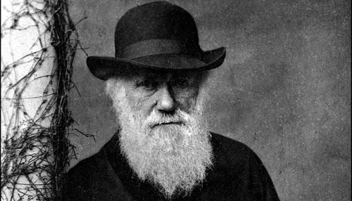 Sheesh Darwin, cheer up.  You look like Jack the Ripper.
