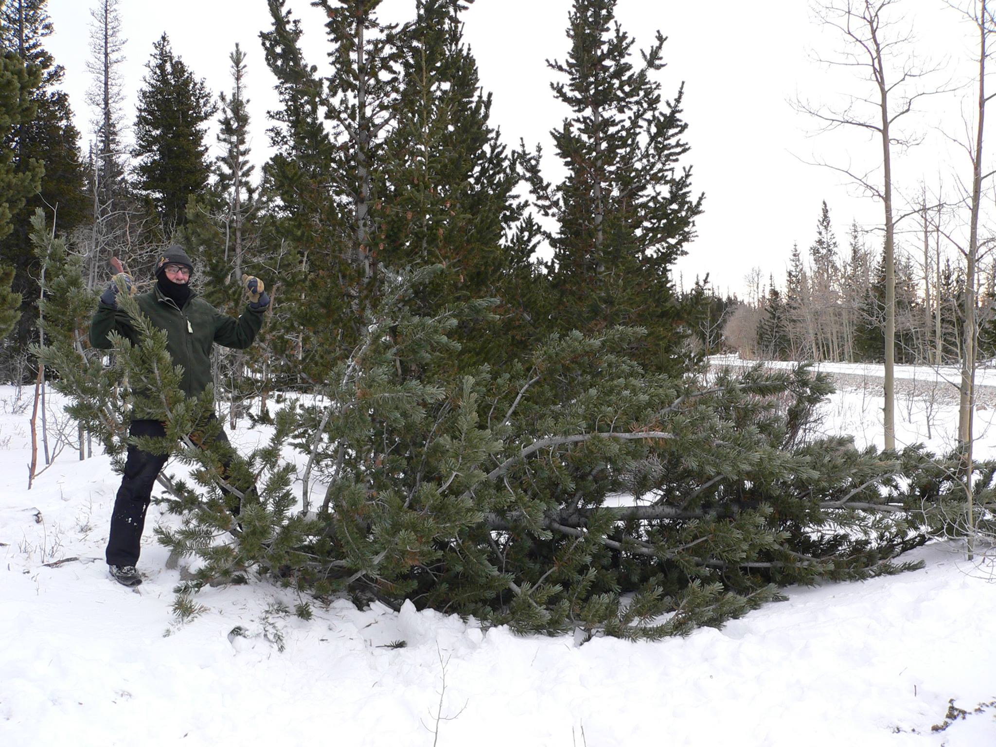 dad-after-cutting-tree-down