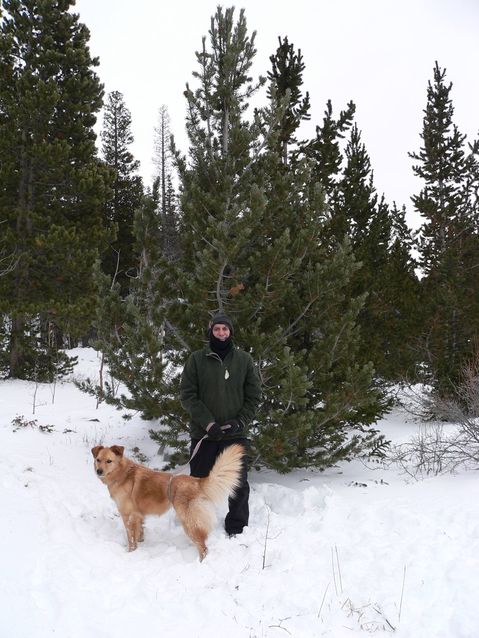 dad-with-tree-and-daisy