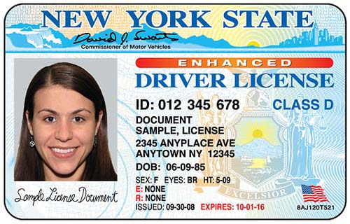 license533
