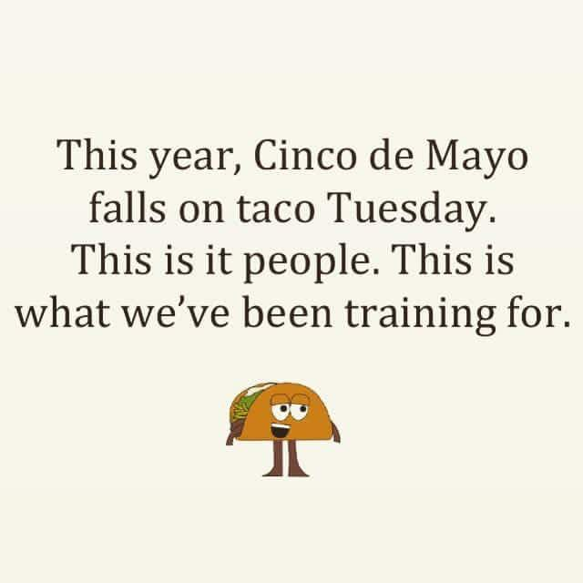 taco tuesday lie