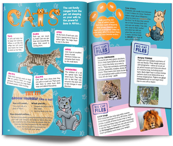cat layout UK children's science magazine for kids