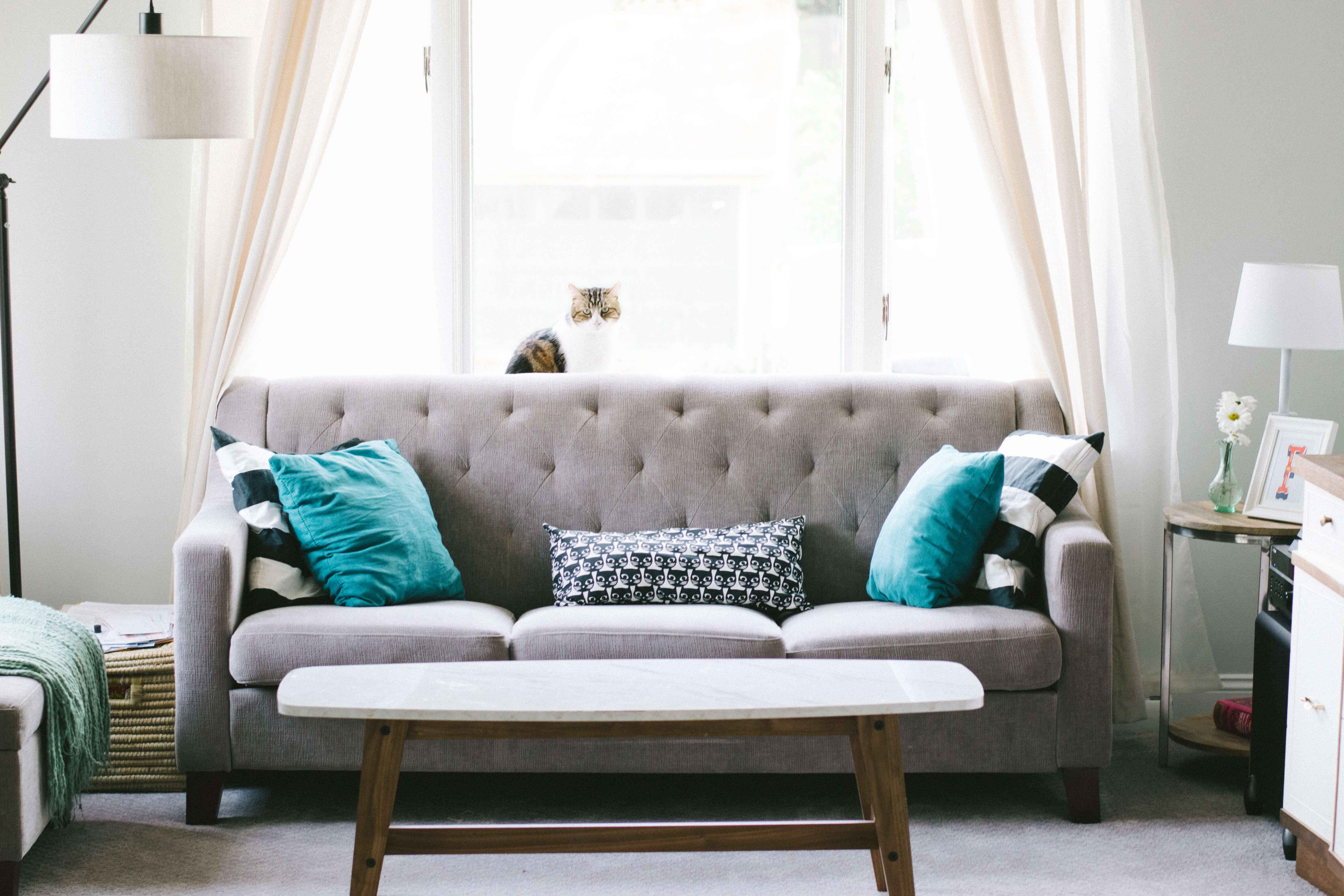 Living Room Whole-House Deep Clean