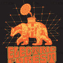 Electric Forest T-Shirt by slidedawg
