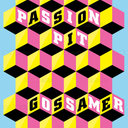 Passion Pit Poster by Joao Unzer