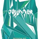 Passion Pit Poster by Ryan Shane Owen