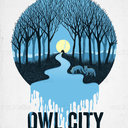 Owl City Poster by Barton