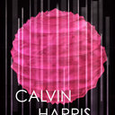Calvin Harris Poster by Briana Dailey