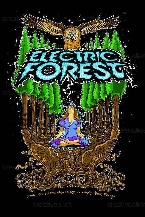 Electricforest-2013-ca_r-marx-