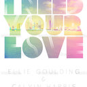 Ellie Goulding Poster by TheSpaceAgeLion