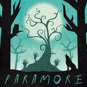 Paramore  Poster by senianinaj