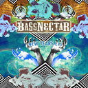 Bassnectar Poster by tesscarlyle