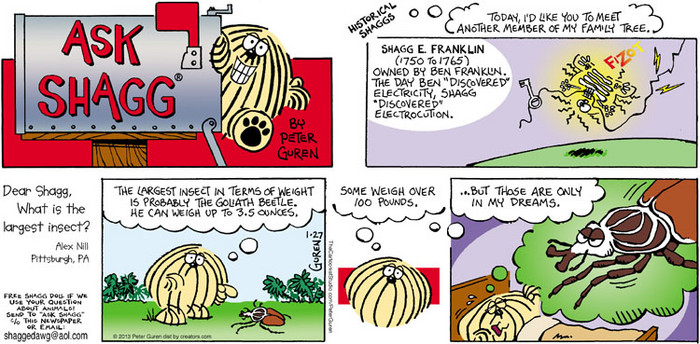 Ask Shagg by 01/27/2013