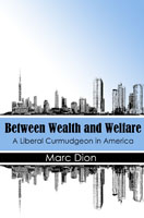 Between Wealth and Welfare: A Liberal Curmudgeon in America