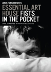 Fists in the Pocket box cover