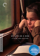 My Life as a Dog (Criterion Blu-Ray)
