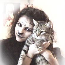Me cat 3 0