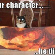 Gatto master